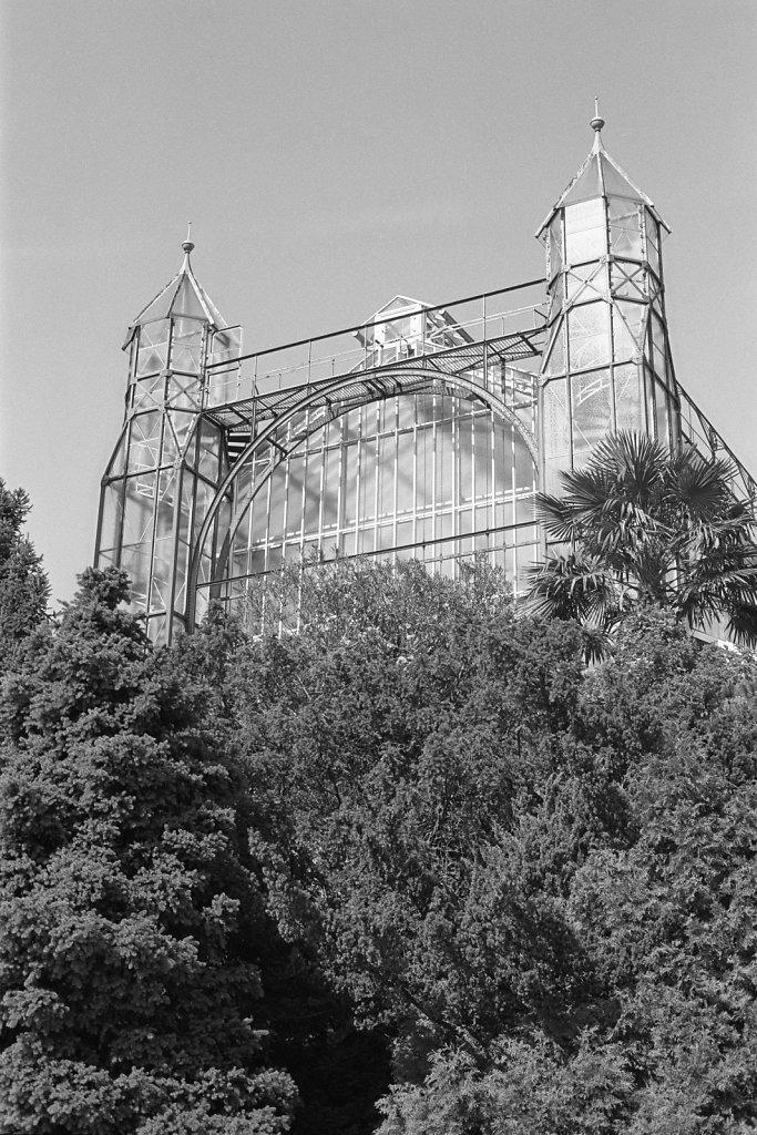 180608-Botanischer-Garten-08.jpg